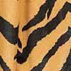 zebra-gelb